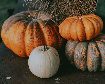 Pumpkin Family Photography