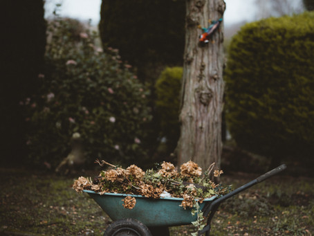 Pruning and Weeding the Soul