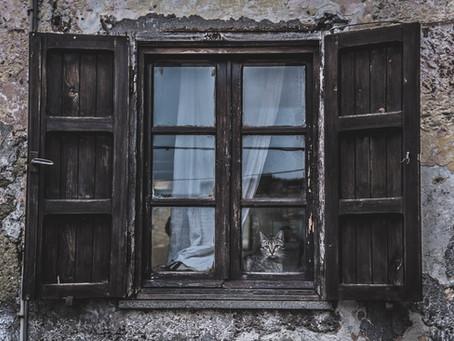 Öykü- Ahmet Fenar- Müştak Bey'in Talihsiz Ölümü