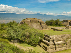 Latin America & Mexico