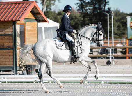 The Top Winter Horse Events in Ocala