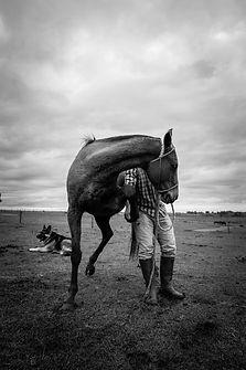 Image by Marcos Gallardo