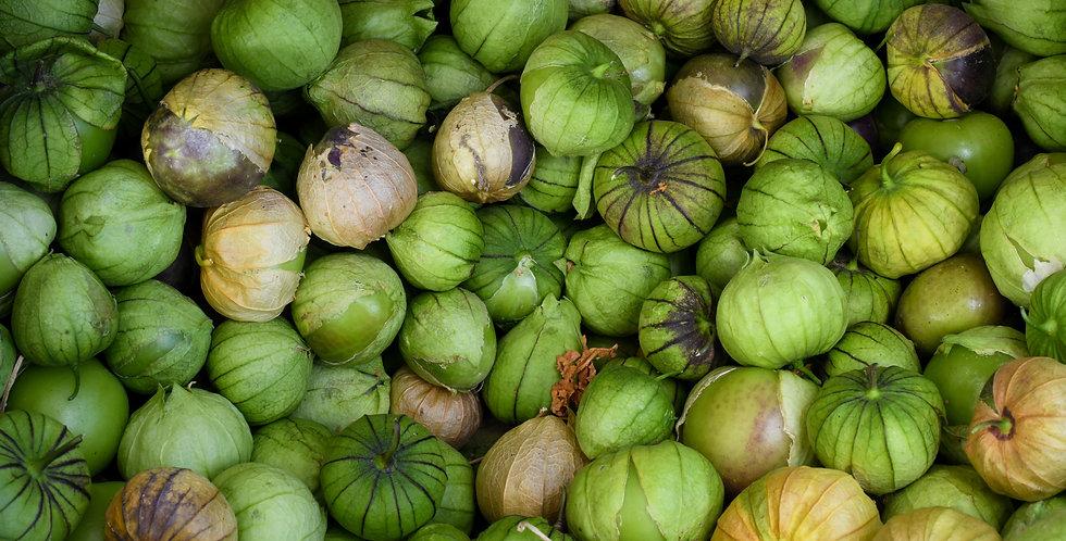 Tomatillo- Green