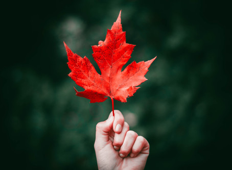 The Last Leaf: An Invitation to Reality