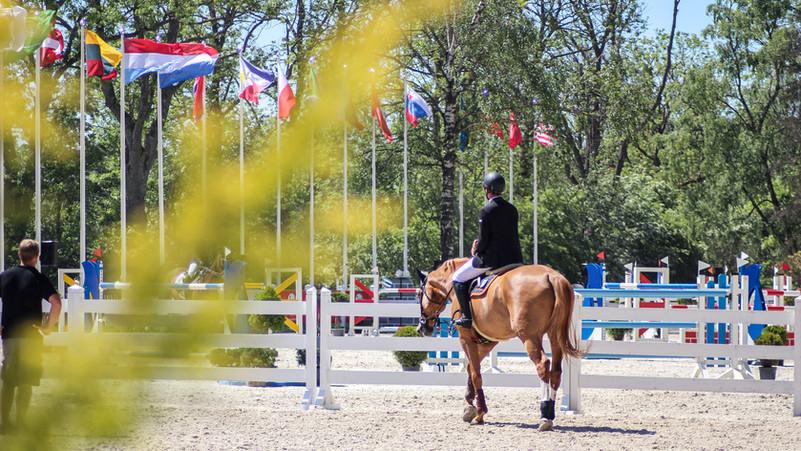 Herpes-Impfpflicht ab 2023 - Die Deutsche Reiterliche Vereinigung hat entschieden