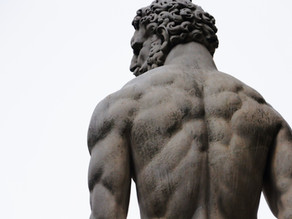 Schultergelenk Funktion/Schmerzen verstehen