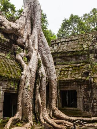 CAMBODIA | Authenticity & Creativity