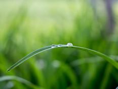 Situation sanitaire : ensemble, maintenons notre équilibre au vert