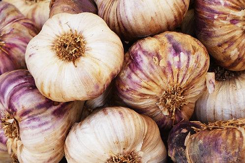 Rise & Root Fresh Garlic