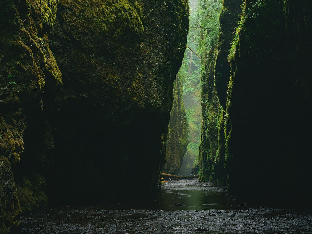 The Oneonta Gorge in Oregon