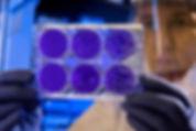 Image de CDC