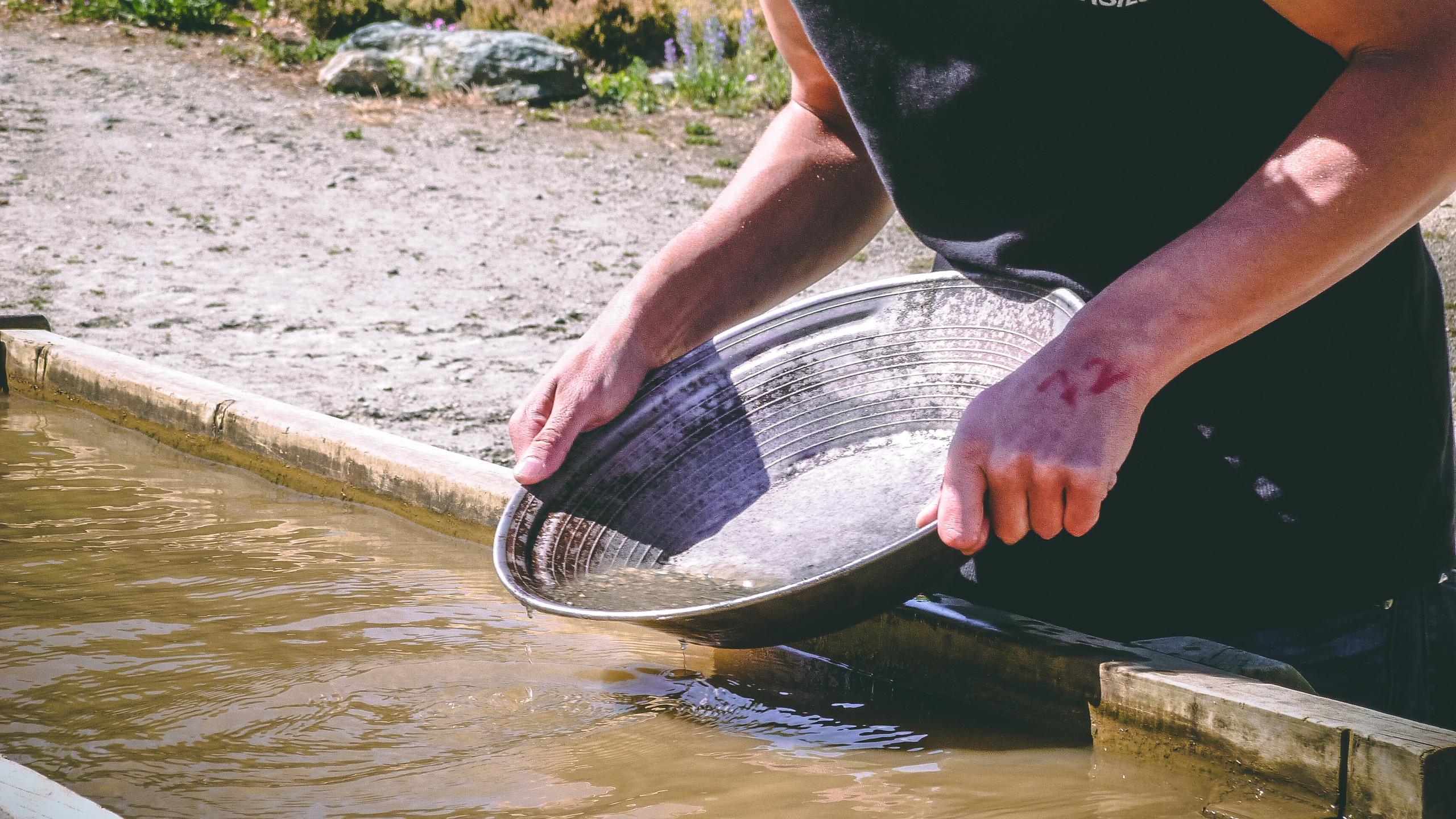 Мытье золота в Новой Зеландии