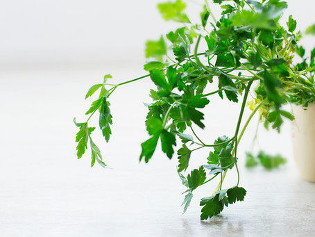 Healthy Benefits of Parsley