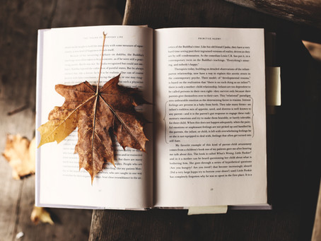 Reading & Writing Strategies I Have Implemented This Fall