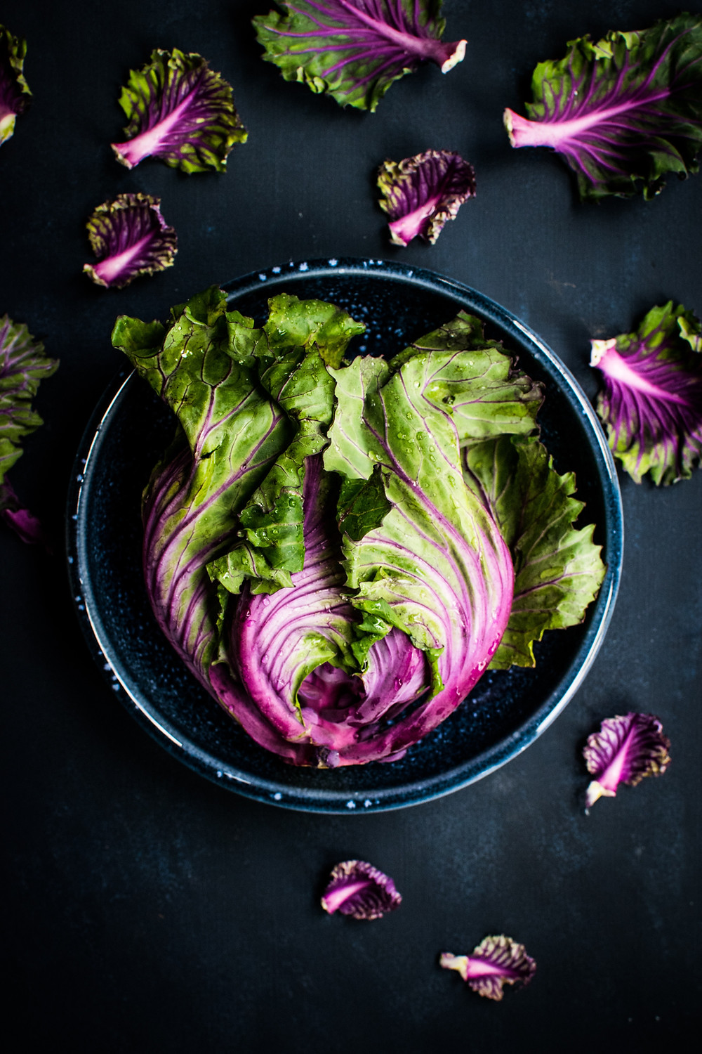 Green leafy lettuce with purple veins