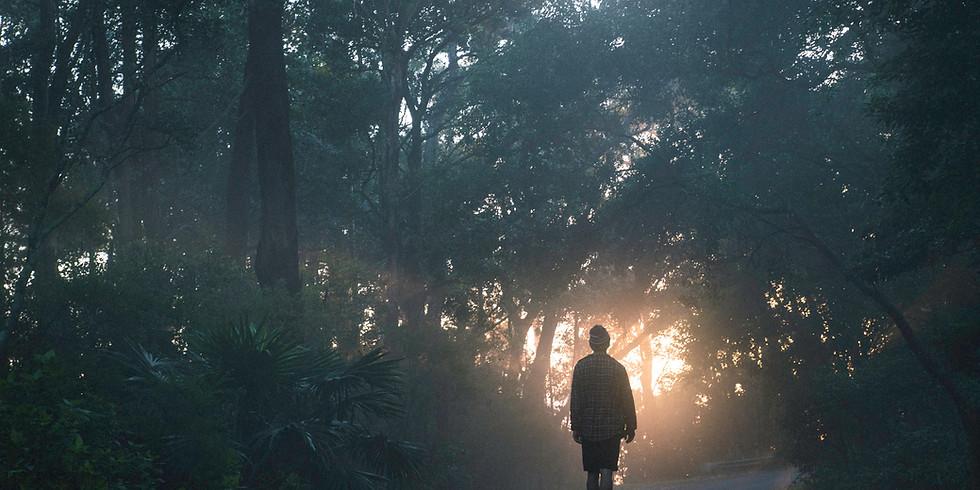 Savigne wander