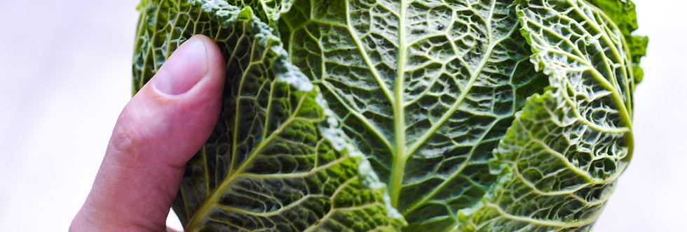 Organic Savoy Cabbage (ea - about 2 lb)