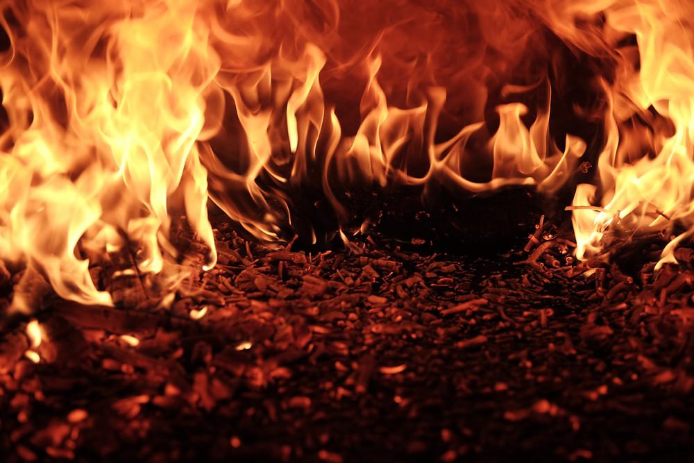 Orange fire on mulch.