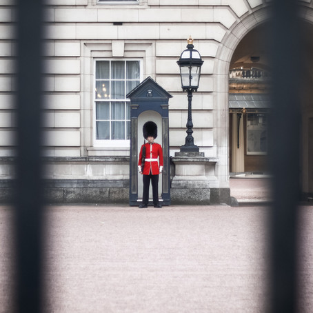 The Reluctant Royal - Harry fights for freedom by S A Ledlie