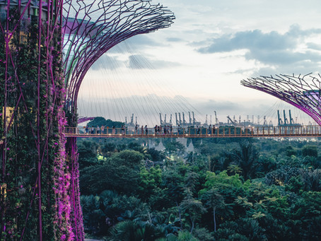 Singapore - A tropical paradise with a modern twist!