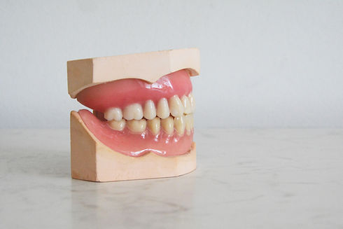 teeth model dentist in Warren, NJ