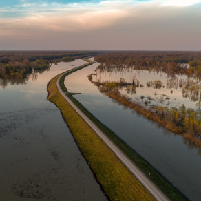 From the Levee by Kurt Olson