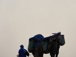 Camels and Baggage