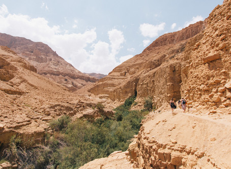 איך מתכננים חופשה מוצלחת בישראל