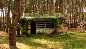 Новая услуга: перевод садового дома в жилой и жилого дома в садовый.