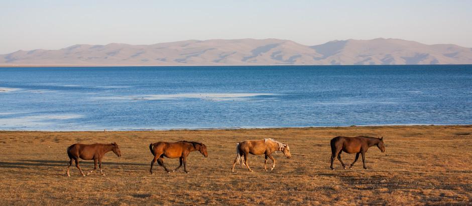 Le Guide Ultime sur la législation des drones au Kirghizistan's (Bishek) | Drone Forum