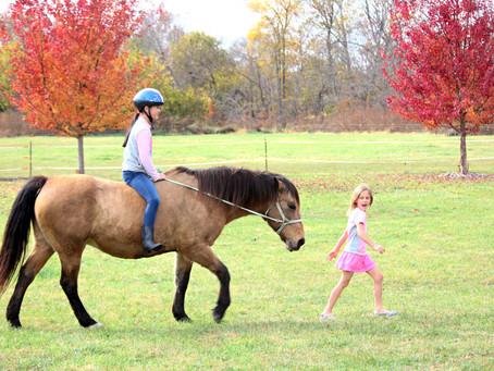 10 Trucos para salir de excursión con tu caballo