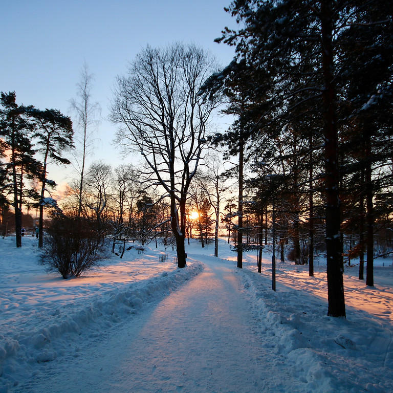 Entering Darkness Together: Honoring the Winter Solstice Walk