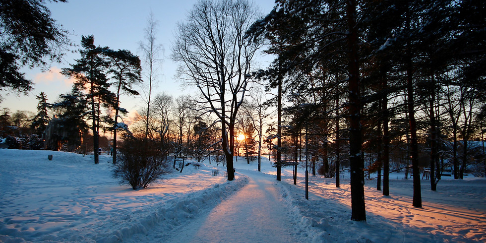 Entering Darkness Together: Honoring the Winter Solstice