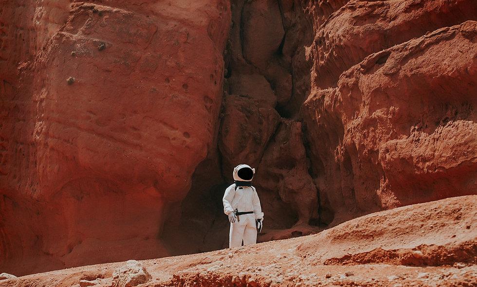 Project Mars Ecosystem