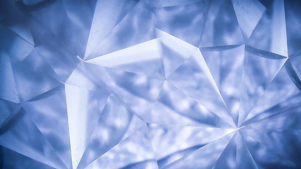 DIAMOND LEVEL - LAUNCH PARTNER