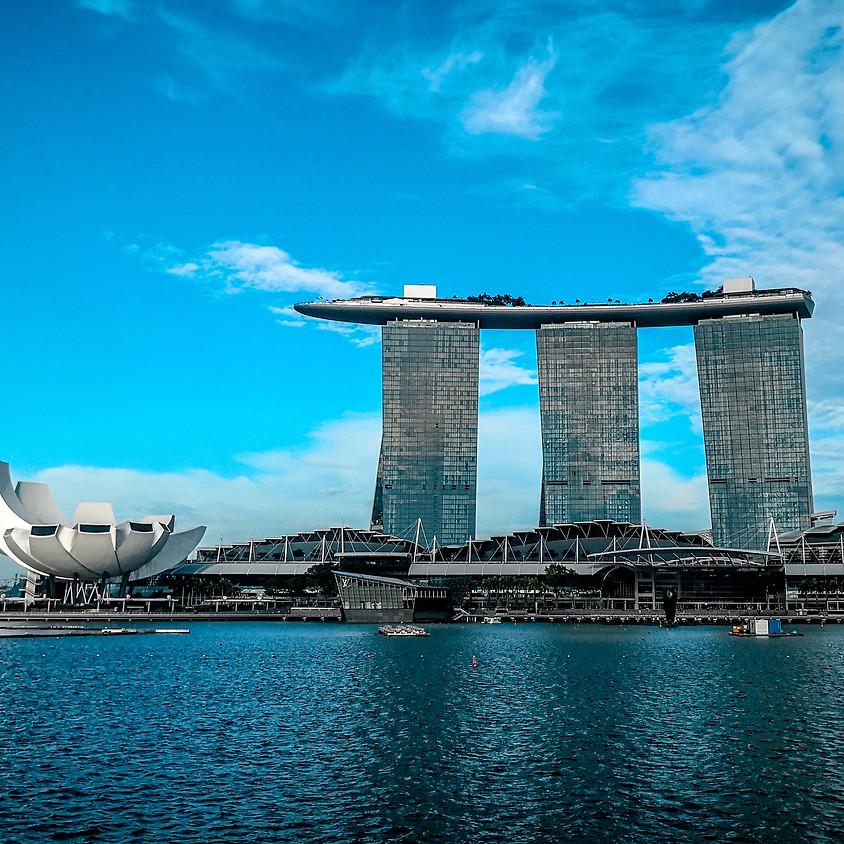 新加坡置業