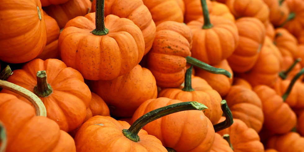 Fall Time Fun - Pumpkin Painting and Hay Ride