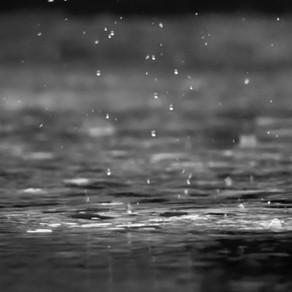 Joy and the Rain