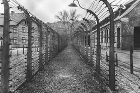 The Sociology of Celebrating Holocaust Remembrance Day in Germany