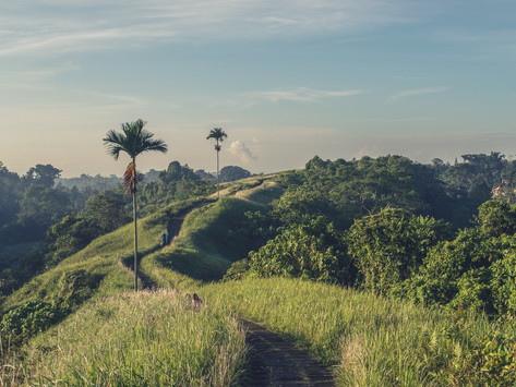 EAST-BALI, DO'S & DONT'S