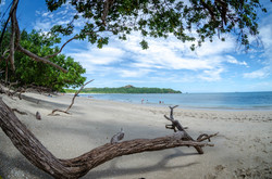 Inanna Sanctuary Costa Rica Beach