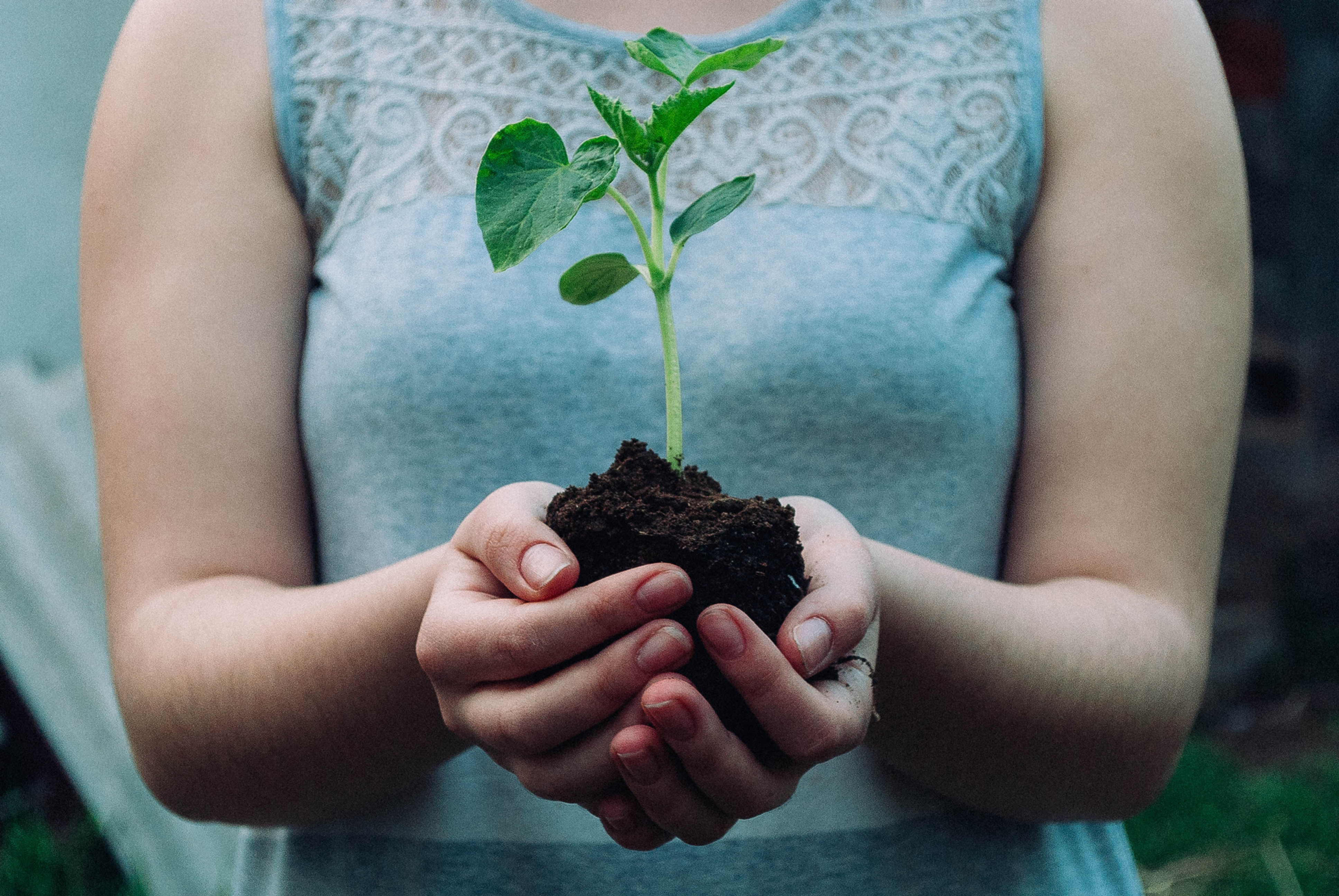 Regenerating Our Soils     and Our Souls