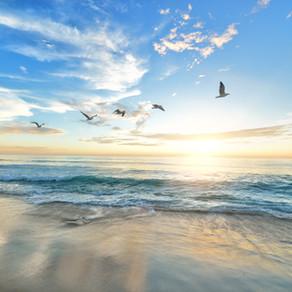 Medytacja, budzenie się i przytomność