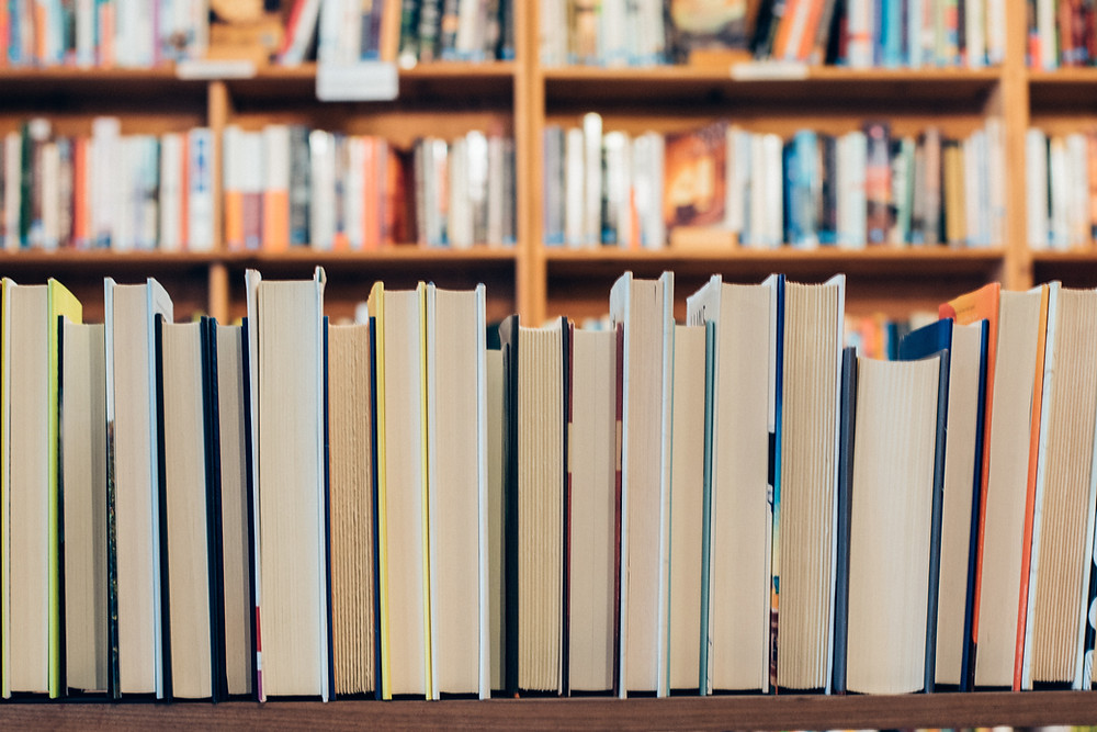 row of books in front of bookshelves