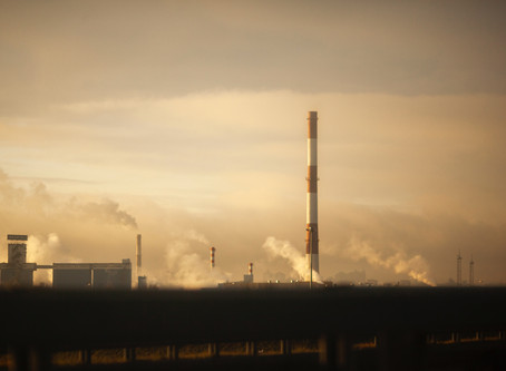 Sectoral Promotion: Environmental Pollution