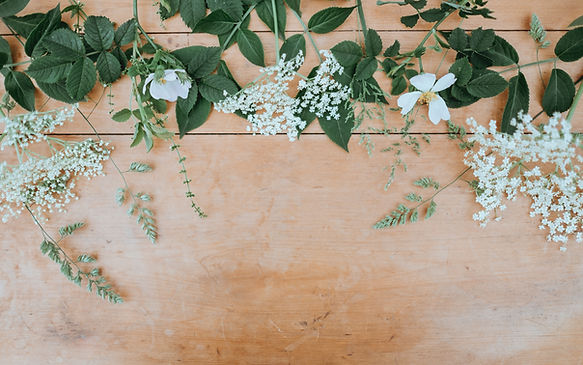 Image by Annie Spratt - plants and flowers with white buds