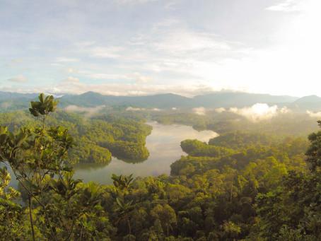 Palm Oil & The Air We Breathe.
