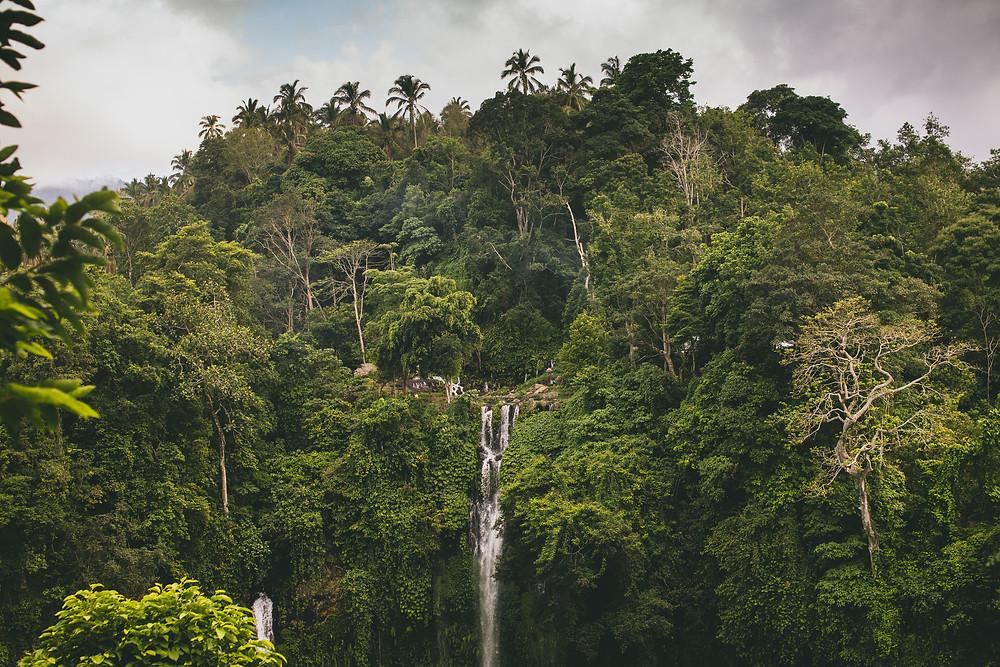 An Amazing Picture Of Sekumpul Waterfalls And Nature