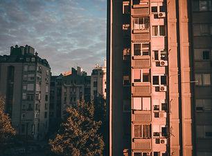 Image by Nikola Stojanovic