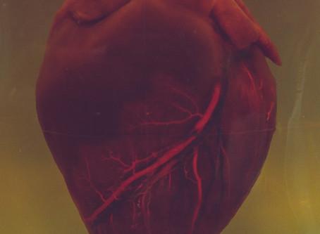 Pesquisadores identificam nova proteína como contribuinte para morte súbita cardíaca